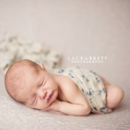 canton newborn photographer